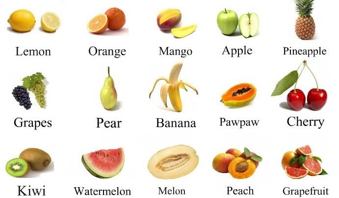Treballant les fruites i les verdures